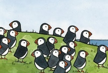 puffins :) / by Lizzie Moore