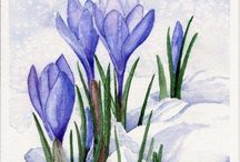природа- весна