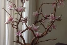 H - Woonkamer Magnolia boom