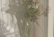 Reflection / Flowers. Bunch of flowers