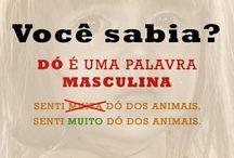 Idiomas - Português