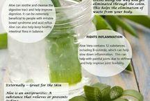 Aloe vera , jeho využití