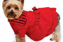 Pet Apparel, Gear & Accessories / Pet fashion and apparel is important to anyone with a pet; being stylish isn't just important to humans, it's important to pets too.  / by EntirelyPets.com