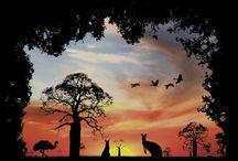 Australian Wildlife / by Wearable Eco Art