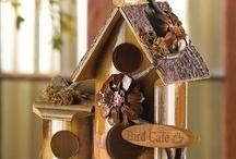 Bird Houses / by Jana Johnson
