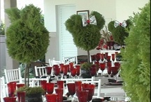 Red Weddings / Red wedding color theme