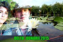 das / delta dunarii august 2015
