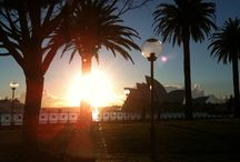 My Sydney Harbour / Work