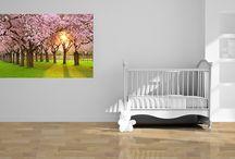 Home Decoration / Pannelli, stampe, tele, tutto per la decorazione della casa!