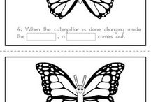 Science-butterfly / by Brittany Hauppa