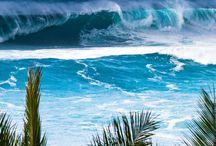 My Hawai'i