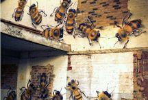 Pszczoły wszędzie - artystycznie