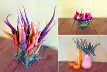 Farm-to-Table Inspiration / Anything to do with fruits and vegetables, including decorating, design and more.