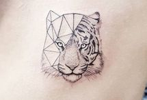 Tygři