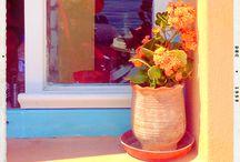 Window & Door Lovelies / Lovely windows and Doors around the world