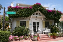 I ♥ Vacation Rentals / Enjoy Catalina Island in the luxury of your own private space and as a great alternative to a Catalina Island hotel.