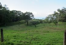 Escalares Dominical Ocean View Estate or Development Parcel / https://www.dominicalrealty.com/property/3979/