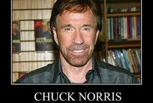 Chuck Norris quotes / by Picture This Photography