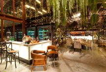 Plants Used to Create Interiors