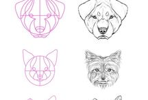 How To Draw: Animals / Here you will find sketches and draft drawings of the animals in various stages of the creation process. If your looking to learn how to draw these fascinating creatures or if you need some new inspiration to help you draw from a new prospective then this board is for you.