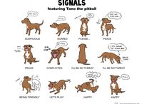 How Dogs Communicate
