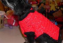 Crochet for PETS / by Dinah Stoffregen