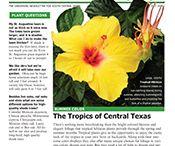 Gardening News / Never miss a newsletter!