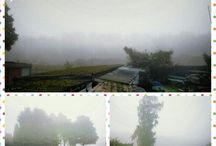Weather in the world