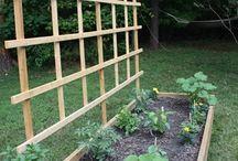 Landscaping / Gardening
