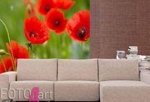 Fotobehang bloemen / Fotobehang bloemen - Decoratie op de muur vormt een moderne en smaakvolle aanvulling op de interieurinrichting. Onze producten kun je aan elke ruimte aanpassen.