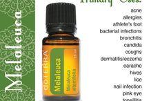Essential Oils / by Tabitha Walters