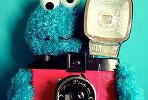 camera / by Alessia Vignali