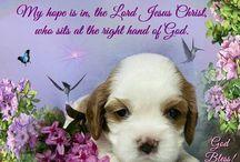 Hope, Love & Faith