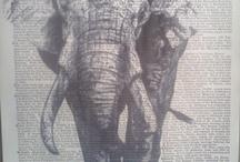 elephants<3 / by Janae Sandman