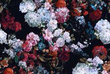 Patterns: Dark Floral