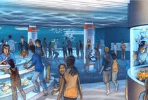 Coming in 2015 - Living Seashore! / The National Aquarium is excited to announce the addition of Living Seashore, an interactive exhibit opening in spring 2015 where guests can explore the shore and touch the animals that live between the tides! / by National Aquarium