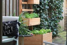 Hochbeet für Balkon und Garten