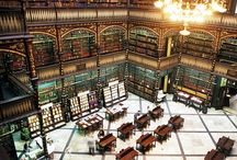 Libraries / These are my heavens.