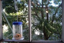 krmítka a hmyzí domečky