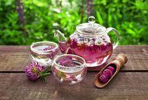 helpfull herbs