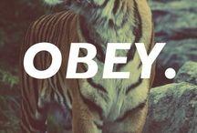 OBEY.it