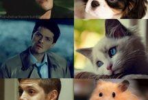Supernatural ... more or less