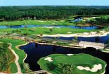 Daytona Beach & Palm Coast, Florida Golf Courses