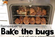 Awesome Pinecones, Sticks, Twigs, & Rocks / As mother nature prepares for winter, I prepare to make crafts and decorations