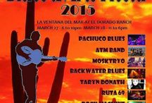 San Felipe Blues and Arst Fiesta 2015 / The 9th edition of the international San Felipe Blues and Arts Fiesta takes place on March 27th and 28th, 2015.  As in the previous years, the Fiesta will be held at the Pavilion in El Dorado Ranch, San Felipe, Baja California, Mexico.  http://www.mysanfelipevacation.com/local-area-guide.asp?cat=7430