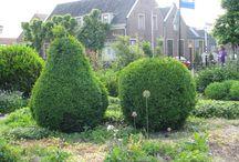 Gespot in tuinen / Wat ik soms zie in tuinen, leuk, gek, 'onmogelijk', onverwacht, kortom het zien waard. Kunst en / of kitsch