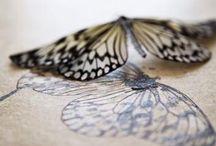 ................  Papillons  .............