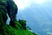 Tour to Mahabaleshwar / The city of Mahabaleshwar is a pinnacle of greenery, boasting one of the only evergreen forests in the world. The landscape abounds with lush hills, valleys and various lookout points