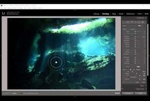 Waterdog Photography tutorials / Video Tutorials on Post Processing in Adobe Lightroom and Adobe Photoshop for Underwater Photographers.  Copyright Brook Peterson, All Rights Reserved.