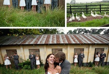 wedding / by Stacy Frick